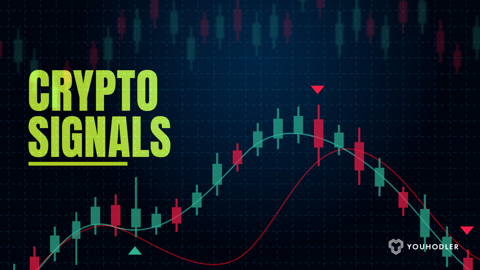 Signal Crypt Packate Trading Pro FX valikute ulevaade